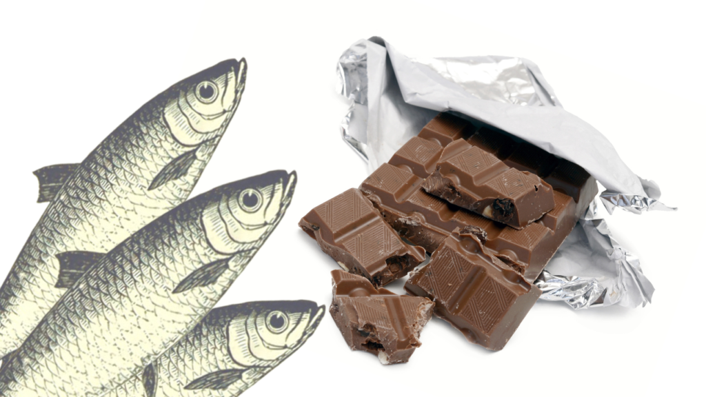 The Proper Conception About Can Fish Eat Chocolate?